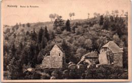Belgique - LIEGE - MALMEDY - Ruines De Renastène - Malmedy