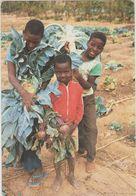 AFRIQUE,BURKINA FASO,province Du Sanguié GOUNDI,centre Agricole FSF,enfant Au Boulot,la Joie Des Récoltes,rare - Burkina Faso