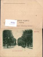 558254,Romania Bukarest Bucuresci Aleea Principala Din Cismigiu - Rumänien