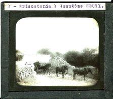 5 - Verviers - Heusy- Briqueterie à Jeangôme - Ancienne Plaque De Verre-négatif -10X8,30cm - Verviers