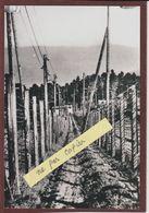 PHOTO - LE STRUTHOF. 67 - Les Barbelés Autour Du Camp De Concentration Allemand - Retirage En 15/10 Cm - Bagne & Bagnards