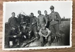 Foto Privat Waffen SS WSS Totenkopf Prinz Eugen Ärmelband Polizei Division 2.WK - 1939-45