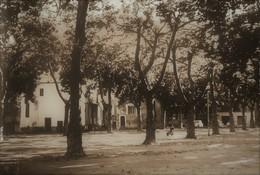 SUMENE - Place Du Plan - Sumène