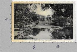 CARTOLINA VG BELGIO - LIEGE - Le Palais Des Beaux Arts - 9 X 14 - ANN. 1955 - Liège