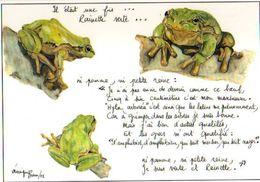 Veronique BRUN Rainette Verte, Grenouilles - Illustrateurs & Photographes