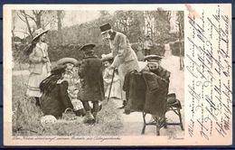 """1916 , AUSTRIA , TARJETA POSTAL CIRCULADA , """" UNSER GUTER , ALTER KAISER """" , CENSURA - Otros"""
