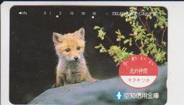 JAPAN - FREECARDS-3051 - 430-3159 - FOX - Japan