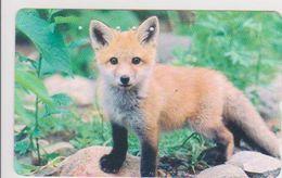 JAPAN - FREECARDS-3052 - 430-6026 - FOX - Japan