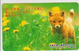 JAPAN - FREECARDS-3053 - 110-203273 - FOX - Japan