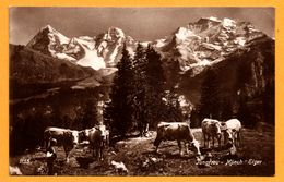 Jungfrau - Mönch - Eiger - Montagne - Vache - Animée - SCHILD BICHSEL BRIENZ - 1921 - BE Berne