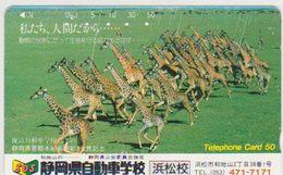 JAPAN - FREECARDS-3084 - 290-19908 - GIRAFFE - Japon