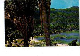 "MEXIQUE---panoramica De "" YELAPA ""--puerto Vallaria--voir 2 Scans - Mexique"