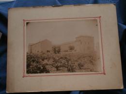 Grande Photo Sur Carton - Domaine Viticole (vinicole), Attelage, Tonneaux, Pontcermes, Vers 1890 L358 - Photos