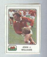STEVE FENWICK....PAYS DE GALLES...TEAM....RUGBY....SPORT - Rugby