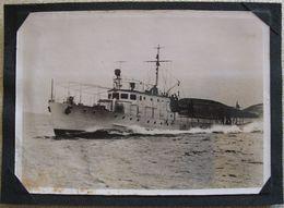 SEARCH AND RESCUE SHIP - ADRIATIC SEA - Schlepper