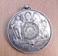 Medaille - Comice Agricole Concours De Mons 1907 - Belgium