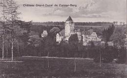 1317/ Chateau Grand-Ducal De Calmar-Berg - Colmar – Berg