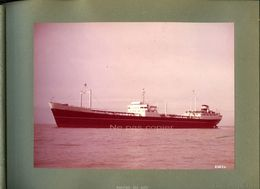 MONTESTORIL CARGO 1959 TANKER - 14 Photos Couleurs  Album Forges Et Chantiers De La Gironde Bordeaux - Schiffe