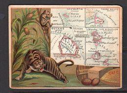 Terre Neuve: Guiana, Miquelon, St. Martin & Tiger ± 1900 11½ X 8½ Cm  (k22-20) - Géographie