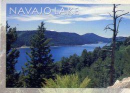 Navajo Lake - Utah - Formato Grande Viaggiata  – E 4 - Cartoline