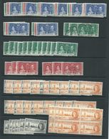 Cayman Islands 1917 - 1980's Accumulation / Stock Of Many Many 100's MNH , M & FU - Cayman Islands