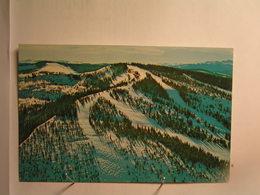 Vail - Riva Ridge Ski Run From Summit Of Vail Mountain - Etats-Unis