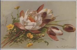 Catharina Klein - Blumen Fleurs Flowers Fiori - Klein, Catharina