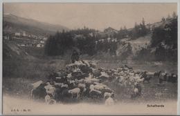 Schafherde, Troupeau De Moutons, Flock Of Sheep - Bergers Landais - Suisse