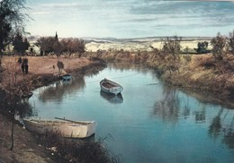 CARTOLINA - POSTCARD - GIORDANIA - RIVER JORDAN - Jordan