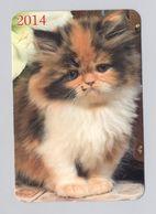 ANIMALS Pocket Calendar Cat Cats 2014 UKRAINE Fauna - Calendari