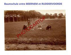 Entre RUDDERVOORDE-BEERNEM-Baumschule-Ecole D'Agriculture-Cliche 770-Inf. Regt.182-GUERRE 14-18-1 WK-Militaria-Belgien- - Oostkamp