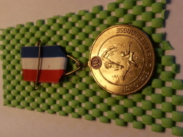 Medaille  / Medal - Zwemmen /  Swimming / Nager  ( 10-1 ) - The Netherlands - Swimming