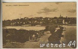 Zellin A. Oder V.1921 Gesamtansicht Mit Oder Und Pferdefuhrwerke  (12880) - Schlesien