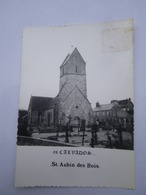 CPSM 14 - CLAVADOS - SAINT AUBIN DES BOIS - L'EGLISE - Autres Communes