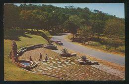 El Salvador. San Salvador. *Parque Balboa...* Circulada 1958. - El Salvador
