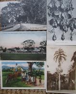 Trinidad Lot 5  Cpa  Antilles - Trinidad