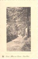 Mont-de-l'Enclus - CPA - Orroir - Sous-Bois - Mont-de-l'Enclus