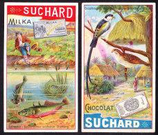 LOT DE 2 CHROMOS Chocolat SUCHARD  Animaux  épinoche  Poisson  Oiseaux Fish  Stickleback  Serie 186 - Suchard