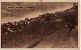 3351 AREZZO CORTONA PANORAMA - Arezzo