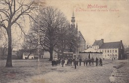 Maldegem, Maldeghem, Stadhuis Met Oude Linden, Draaimolen, Carrousel  (pk42340) - Maldegem