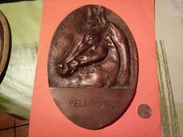 TÈTE DE CHEVAL DE COURSE PELADYSON  ANCIENNE GRANDE PLAQUE EN LAITON Ou BRONZE à Datée Non Nettoyé VOIR PHOTOS - Bronzes