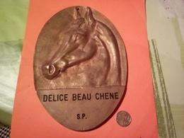 TÈTE DE CHEVAL DE COURSE DELICE BEAU CHENE ANCIENNE GRANDE PLAQUE EN LAITON Ou BRONZE  à Datée Non Nettoyé VOIR PHOTOS - Bronzes