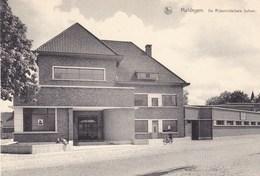 Maldegem, Maldeghem, Middelbare Rijksmiddelbare School (pk42357) - Maldegem