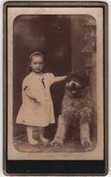 Cdv Photo Originale XIX ème Petite Fille Et Son Magnifique Chien Dog Cdv 2208 - Photographs