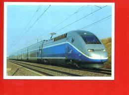 Train TGV En Ligne Sur LGV - SNCF - Fabbru Et Leveque - Trains