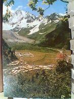 CHINE TIBEB NEW VILLAGE  ZONA FORESTAL  N1965 GN21009 - Tibet