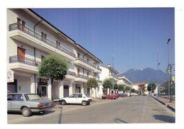 Cartolina Postale Avellino Provincia - S. Michele Di Serino 1 - Largo Mercato - Avellino