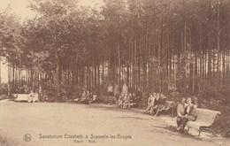 Sijsele, Sanatorium Elisabeth A Sysseele Lez Bruges, Bosch (pk42427) - Damme