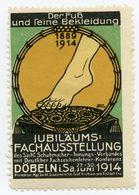 CINDERELLA : GERMANY - DOBELN - JUBILAUMS FACHAUSSTELLUNG, 1914 - Cinderellas