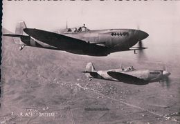 Aviation RAF, Royal Air Force, SPITFIRE (590) 10x15 - 1939-1945: 2ème Guerre